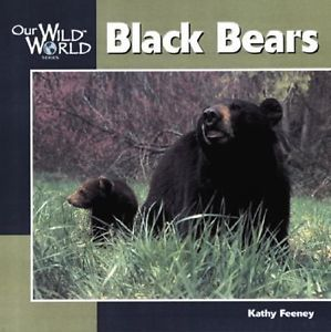 Black Bears (Our Wild World)