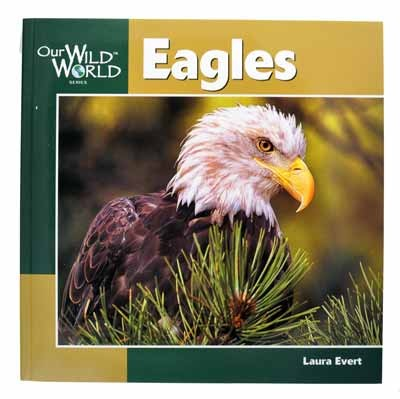 Eagles (Our Wild World)