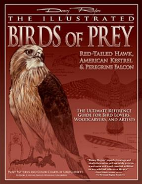 Illustrated Birds of Prey: Red-Tailed Hawk American Kestral & Peregrine Falcon