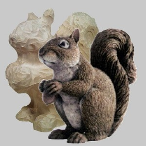 Roughout Squirrel