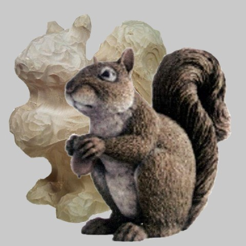 Roughout, Squirrel